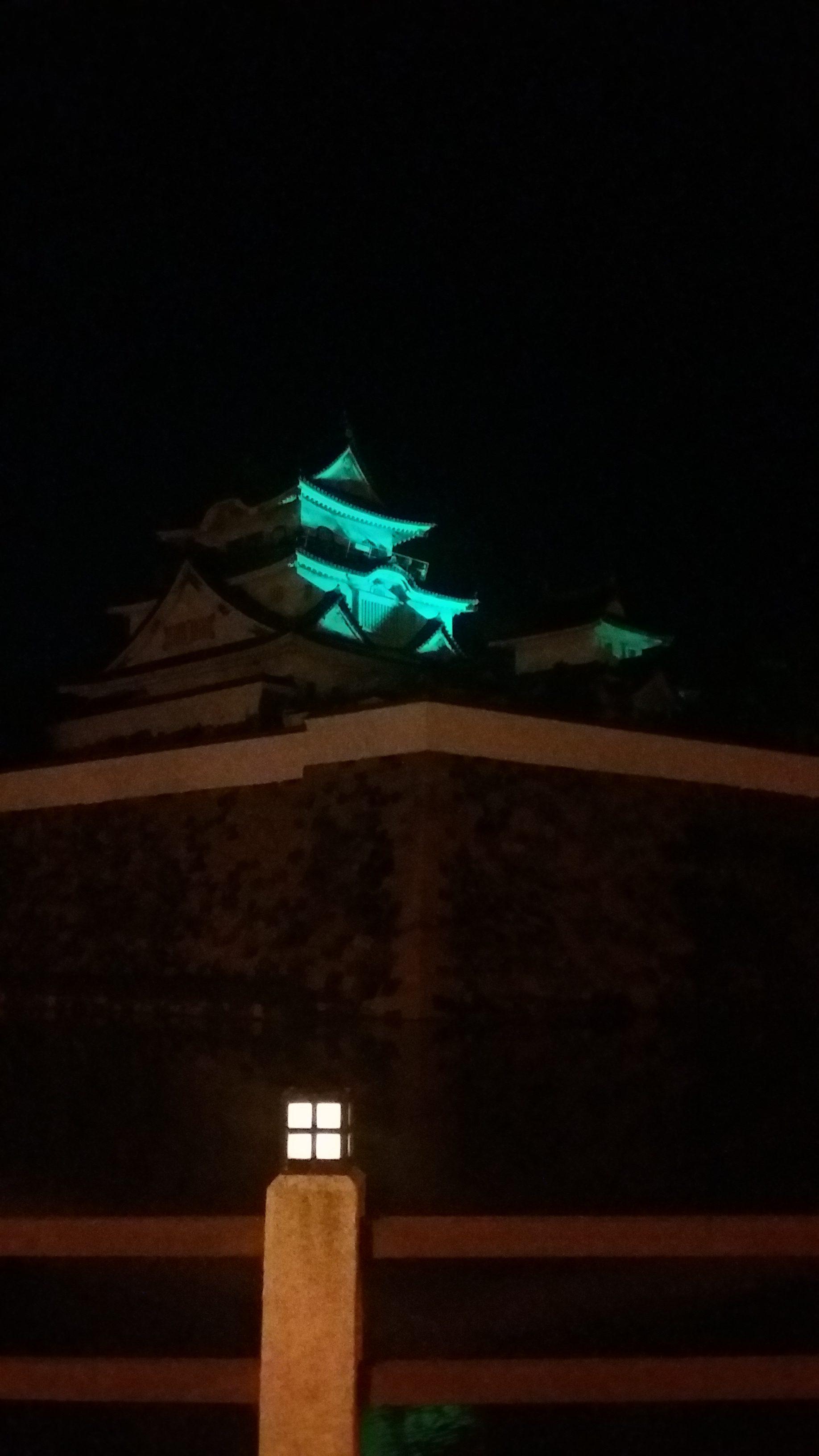 岸和田城ライトアップ